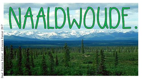 Naaldwoude (Gr.6 - SW. - Kw #3)