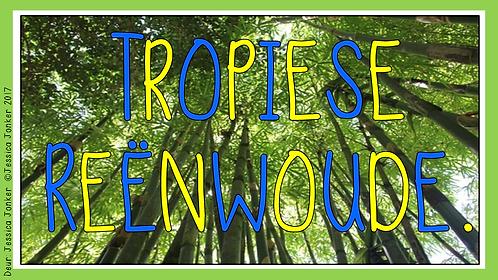 Tropiese Reenwoude (Gr.6 - SW. - Kw #3)