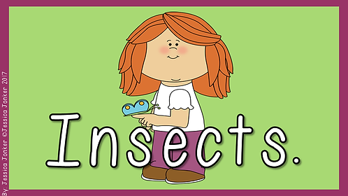 Insects (Gr.3 - LS - Term 2)