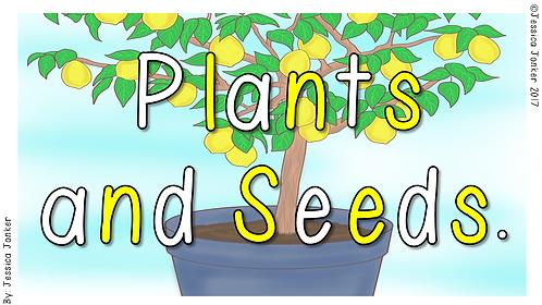 Plants & Seeds (Gr.1 - LS- Term 3)