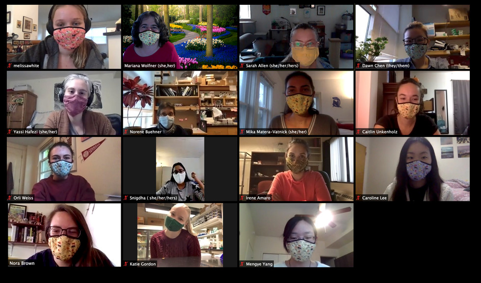 Zoom lab meeting during the COVID pandemic. All lab members are wearing masks.