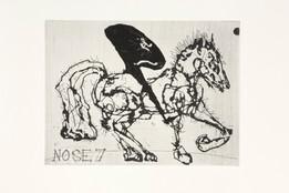 Nose 7