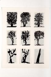 kentridge Universal Archive 9 trees HR.j