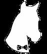 logo_showpony_2_edited_edited.png