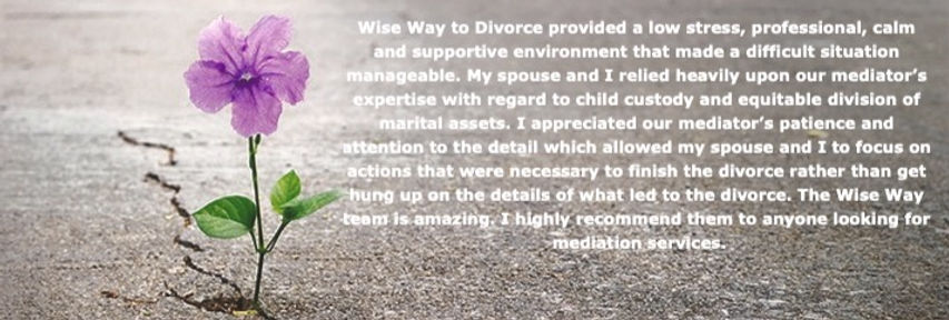 family mediator for divorce near me mediation for divorce wise way to divorce NJ Rhode Island New Jersey