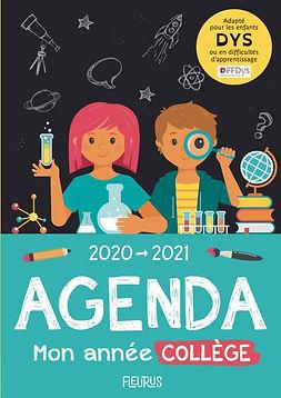 agenda dys.jpg