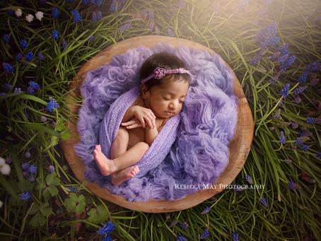 Digital Illusions....Newborn Photography SAFETY FIRST!