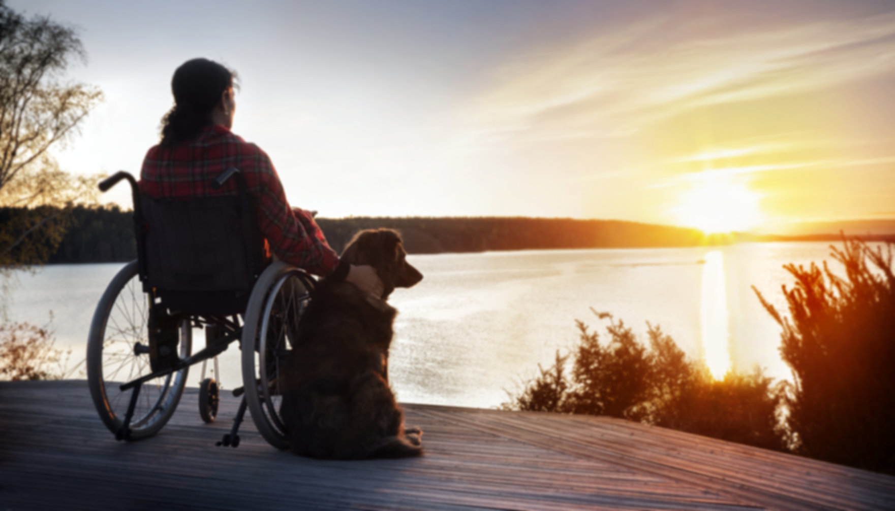 Woman in wheelchair with her dog at suns