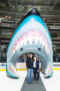 San Jose Sharks Head Photos