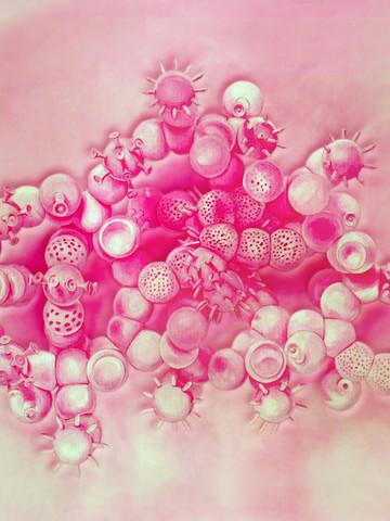 Cristiano Petrucci palline rosa