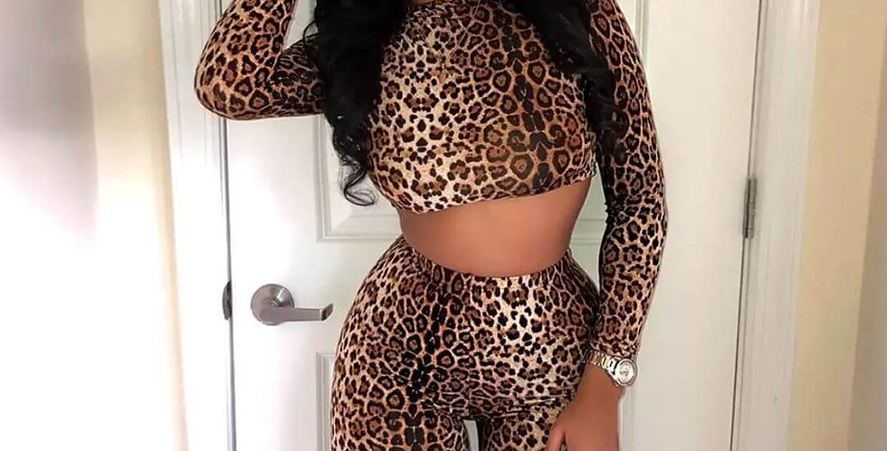 Leopard Print Two Piece Matching Set