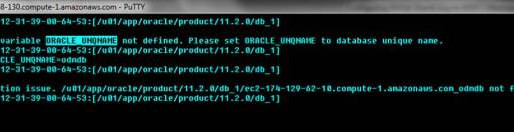 Configuring EM for Oracle 11g on AWS