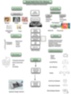 02 Dental Health Clinic Flow chart.png