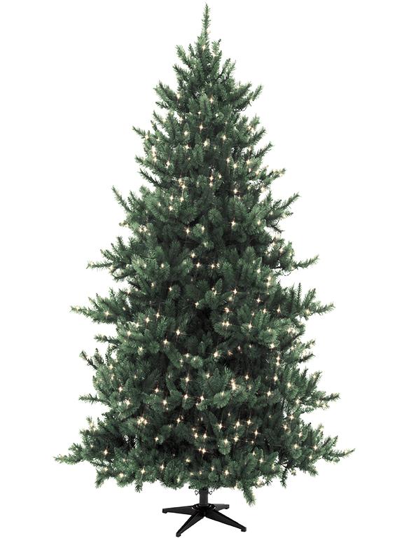 Christmas Tree Tall_edited.png