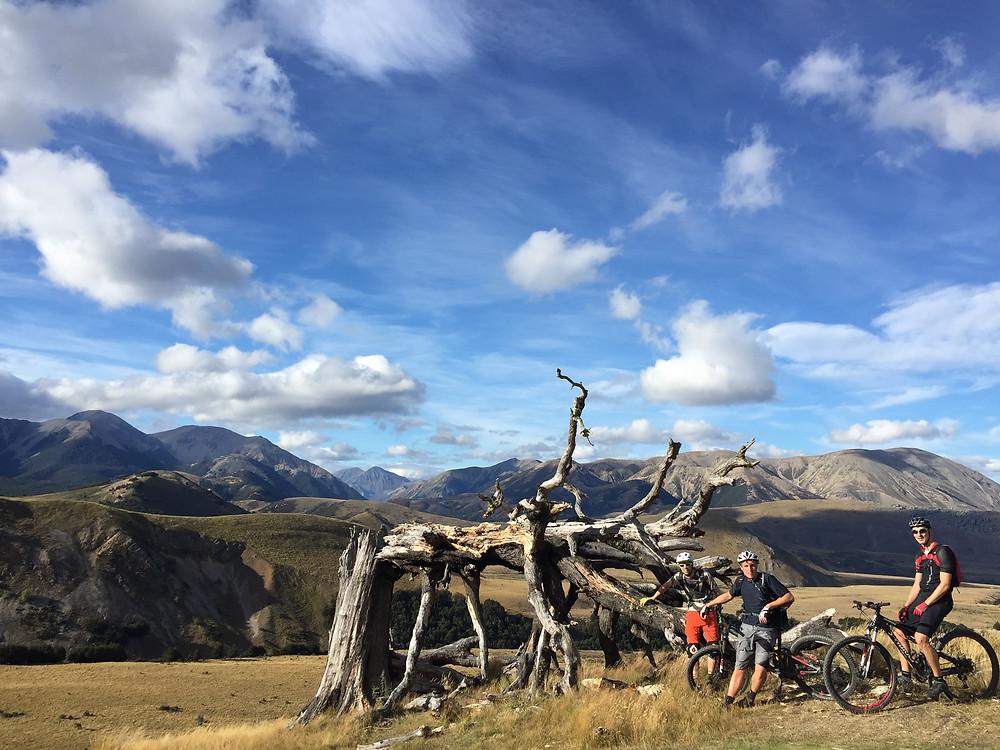South Island Mountain Bike Tours