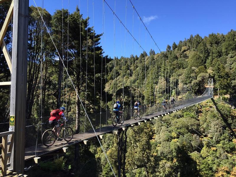 timber trail, guided mtb, swing bridge, DOC