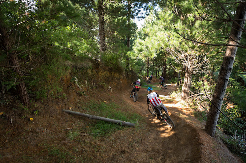 440 mountain bike park trails