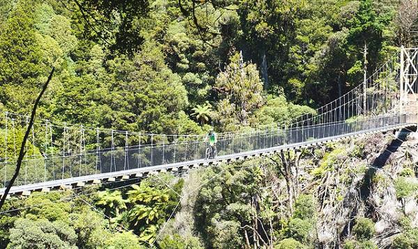 JustMTB swing bridge Timber Trail