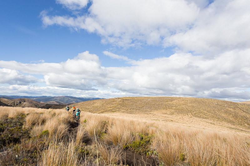 heli biking in North Island New Zealand