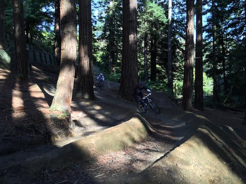 Skills park rotorua mountain biking