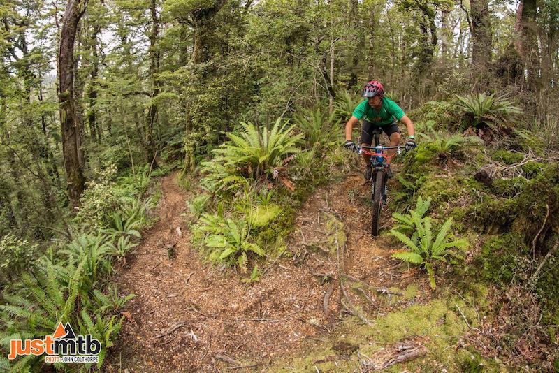New Zealand MTB Trail Grade 4