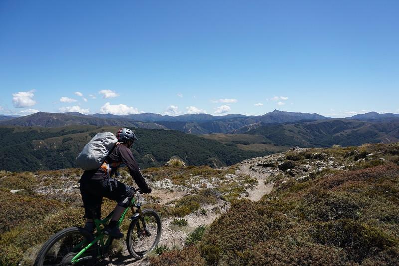 heli biking new zealand justmtb