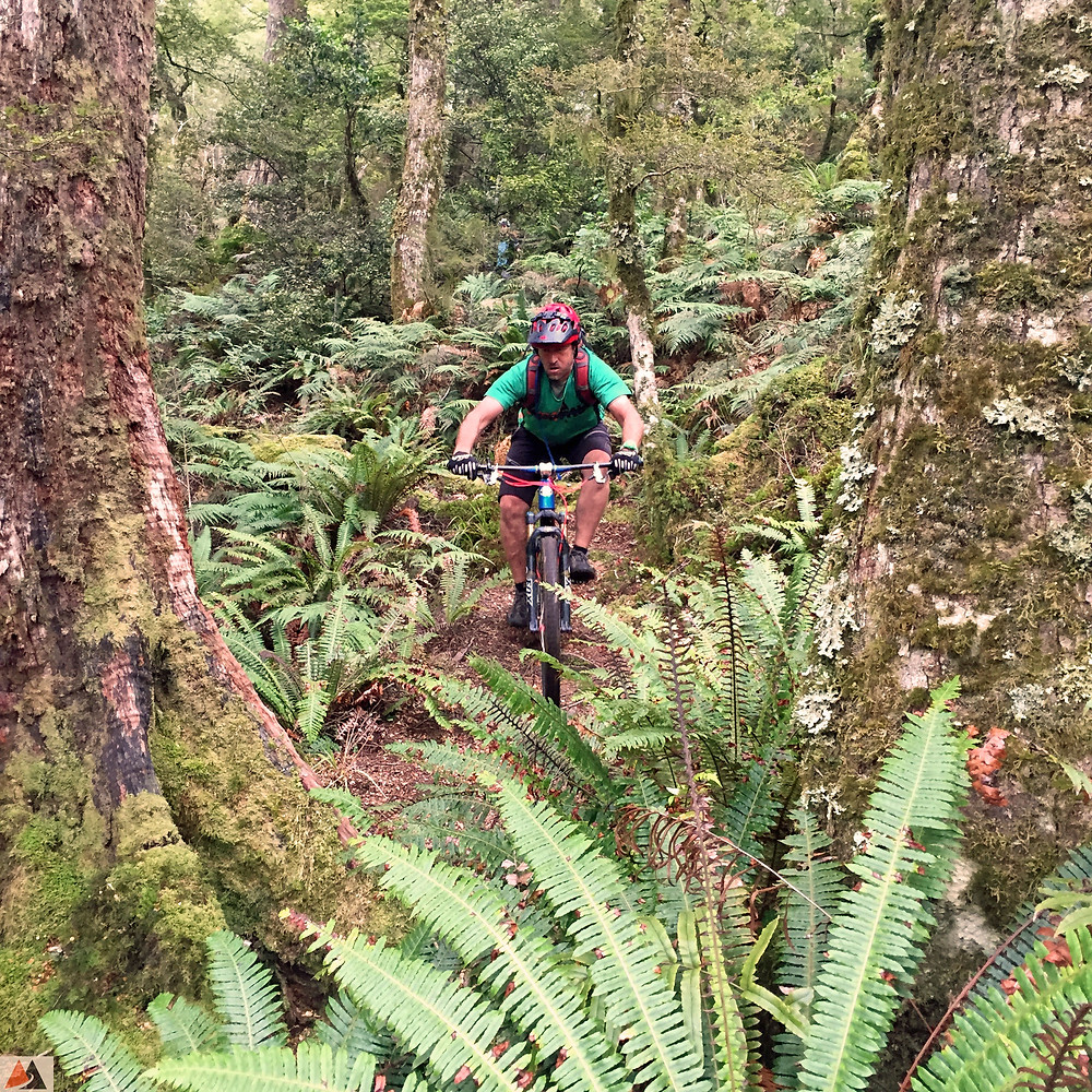 New Zealand backcountry mountain biking