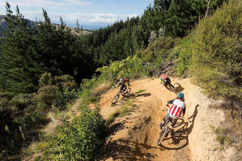 440 Mountain Biking Park In New Zealand