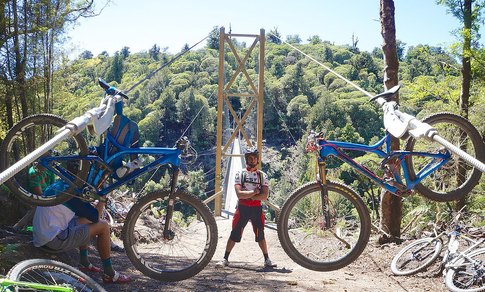 The MTB Tree Rental Bikes New Zealand