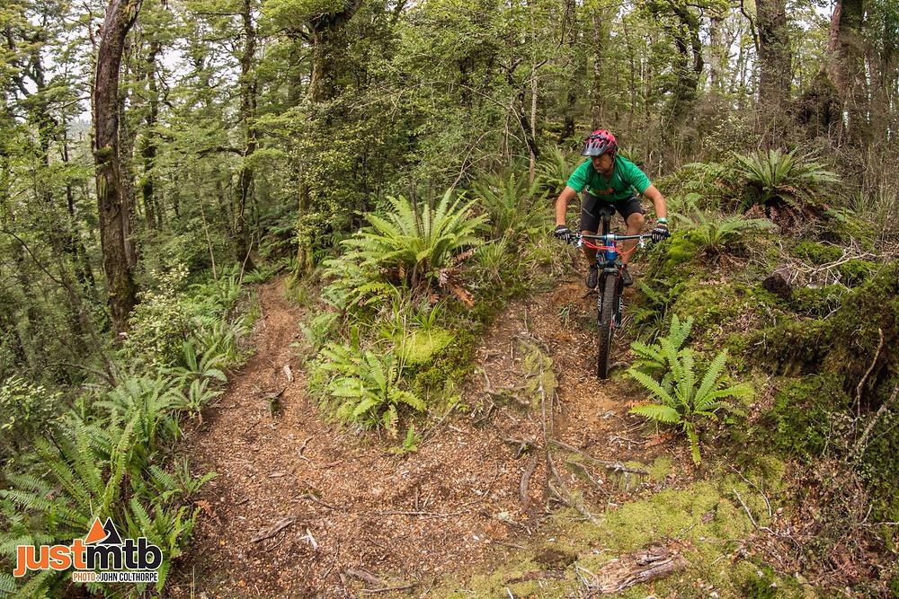 North Island Mountain Biking In New Zealand