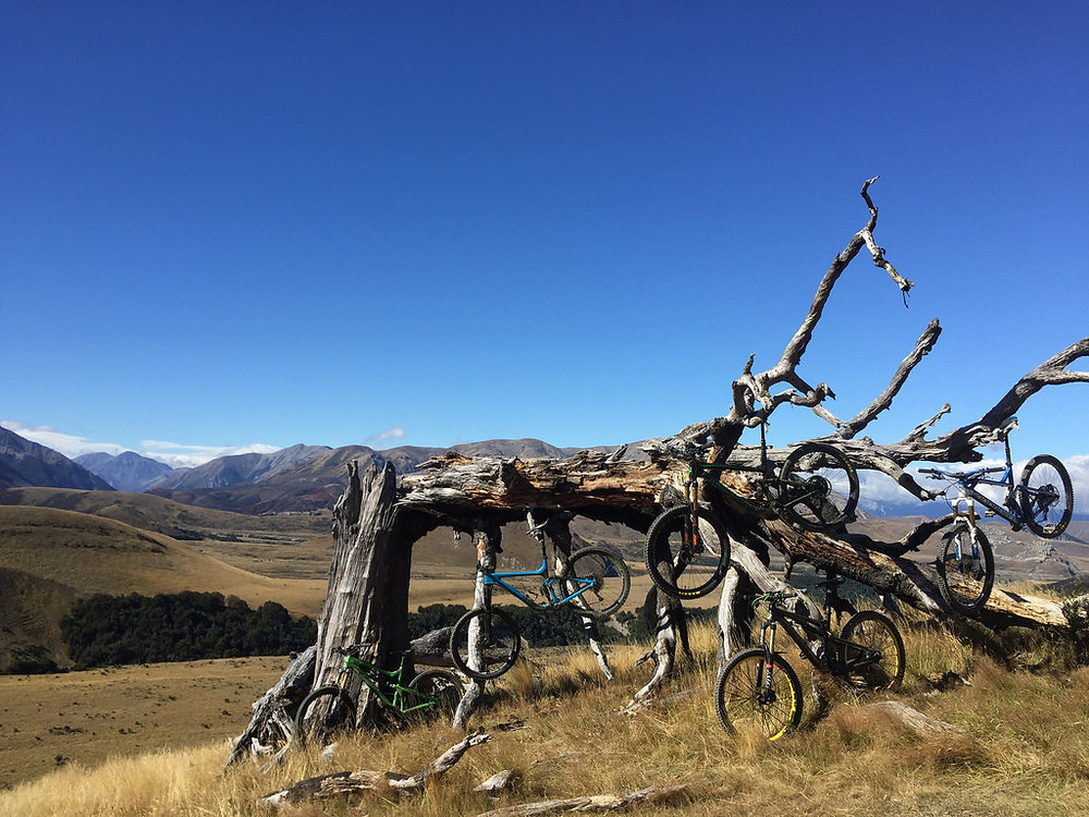 Which Mountain Bike To Take To New Zealand