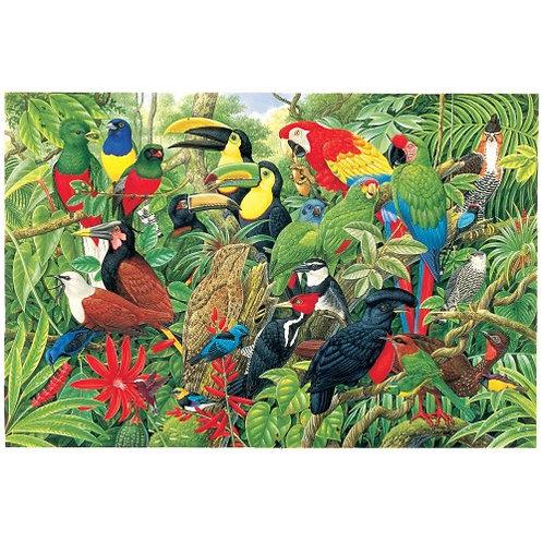 Birds of Costa Rica - 1000 Piece Jigsaw Puzzle
