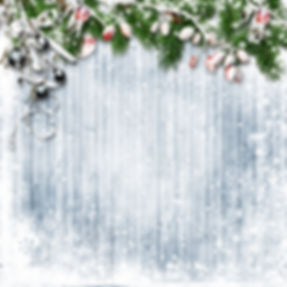 Christmas firtree with holly, snowfall o