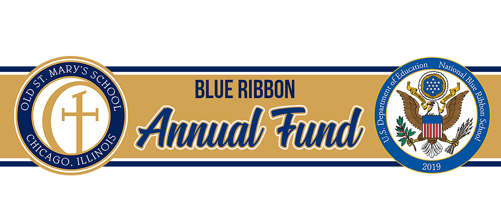 Blue Ribbon Annual Fund Banner.png