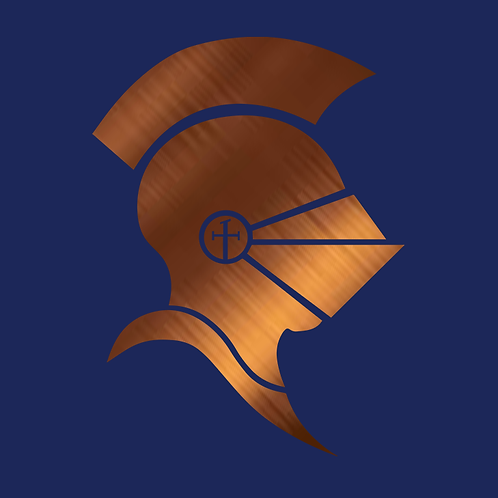 Bronze Knight Experience