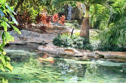 Ponds