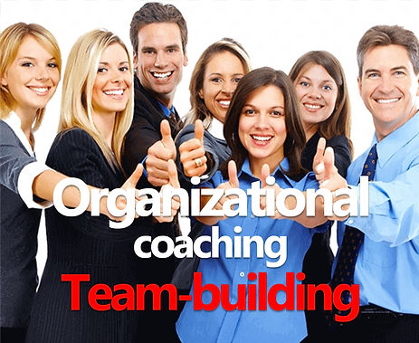 organizational coaching team building