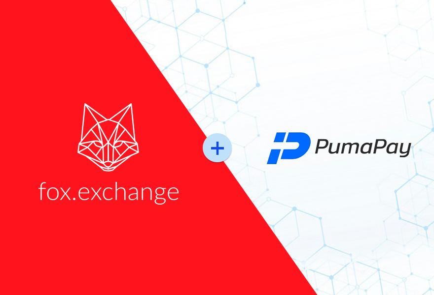 fox kereskedelem bitcointalk)
