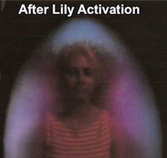 After-Lily.png