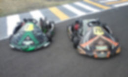 Lifestyle Autos Karting Solutions TEKA 4SKA