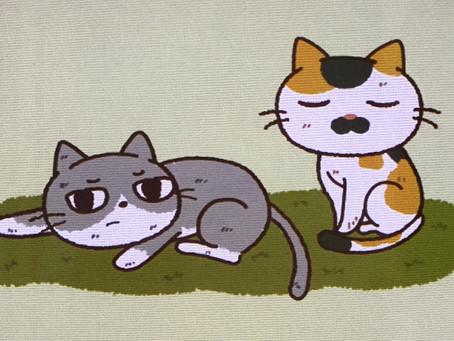 「ノラ猫は、幸せ?」