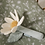 Thumbnail: Little Dutch Hochet Peluche Fleur