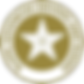 RoSPA RoADAR Badge
