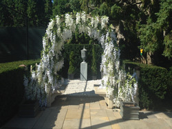 arbour with wisteria