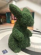 bunny eaton centte 3.jpg