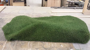 grass burm 2.jpg