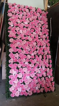 boxwood wall with roses 2.jpg