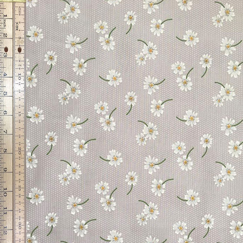 Daisy Grey Spots