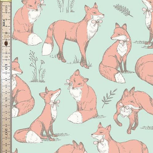 Mrs Fox Duckegg