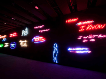 TRACEY EMIN AT THE HAYWARD GALLERY